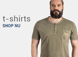 heren t-shirt in grote maten